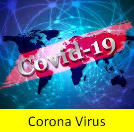 Coroanavirus response